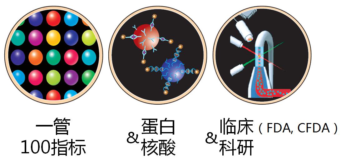 2015-03-17 Luminex 微球三圖文 v2